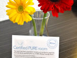 PURE allergy-friendly room