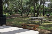 BBQ Grills and Picnic Tables