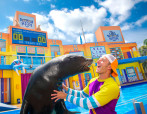 Sea Lion High With Trainer