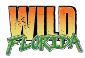 Wild Florida logo