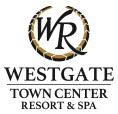 WG Town Center Logo