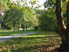 Les Myers Park