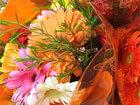 Midway Florist