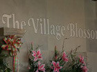 The Village Blossom
