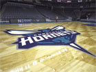 Charlotte Hornets NBA Basketball