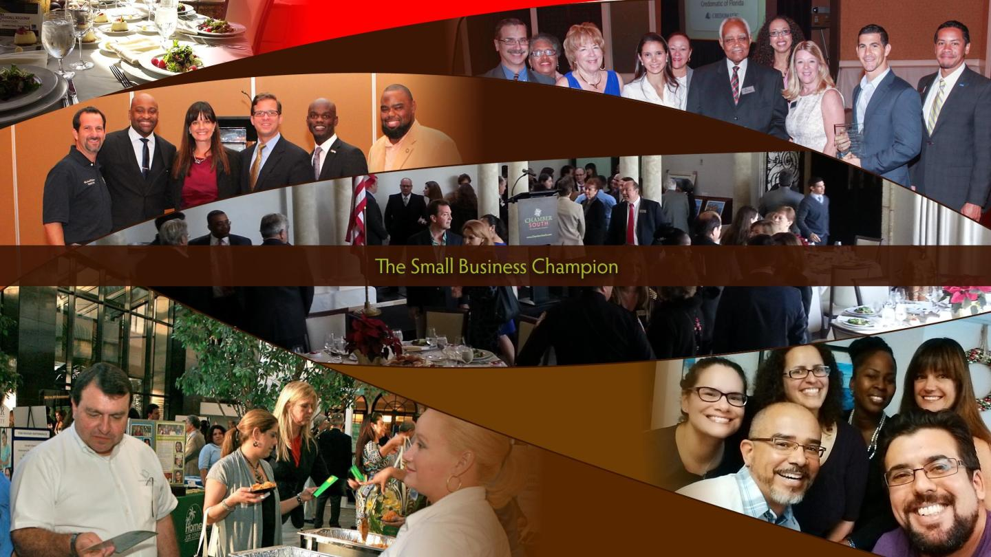 The Small Business Champion