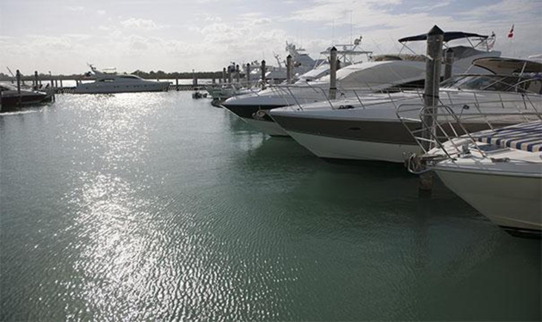 Boats docked