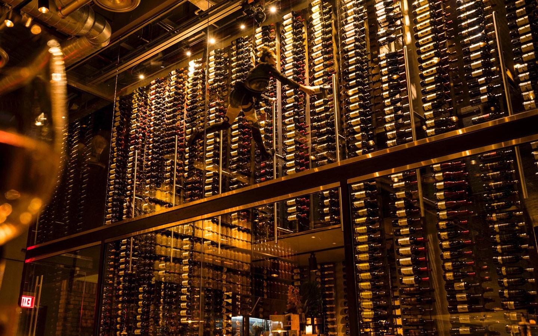 Cibo Wine Bar Wine Cellar & Wine Angel