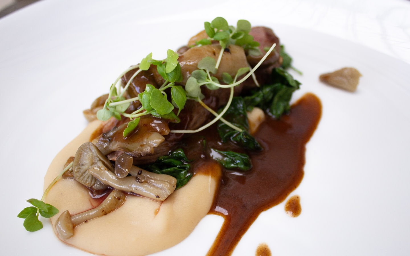 Seared Lamb Loin, Whipped White Bean Cream, Wilted Spinach, Exotic Mushrooms, Cocoa Lamb Red Wine