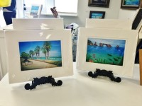 Harbor Village Gallery & Gifts