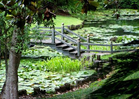 Bellingrath Gardens and Home