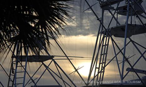 Dolphin Cruise Amp Dinner Cruise Gulf Shores Amp Orange Beach