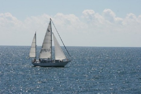 Sail the Daedalus