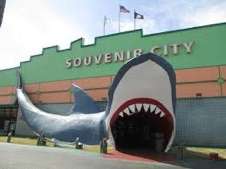 Souvenir City of Gulf Shores