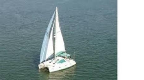 Surfari Catamaran Sailboat Tours