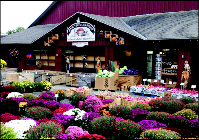 Annutto's Farm Stand and Cider Mill