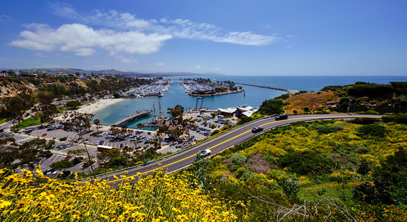 Dana Point Harbor Image