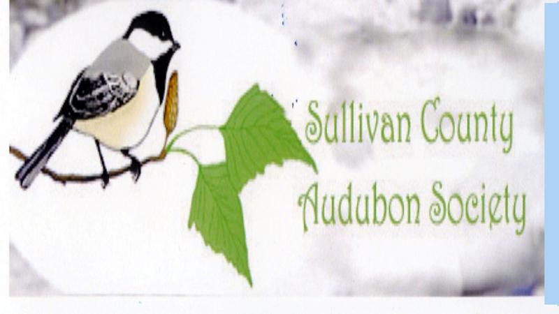 Sullivan County Audubon Society