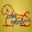 A. Lowe/Creative Photography