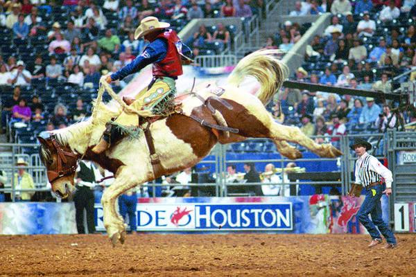 El Rodeo de Houston y Facebook
