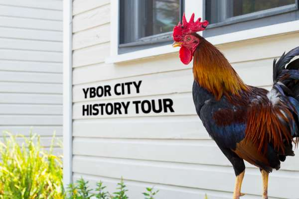 Ybor History Tour
