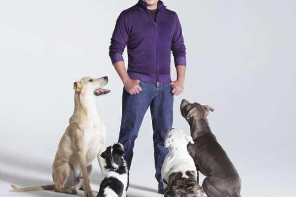 cesar_millan____the_dog_whisperer_w640