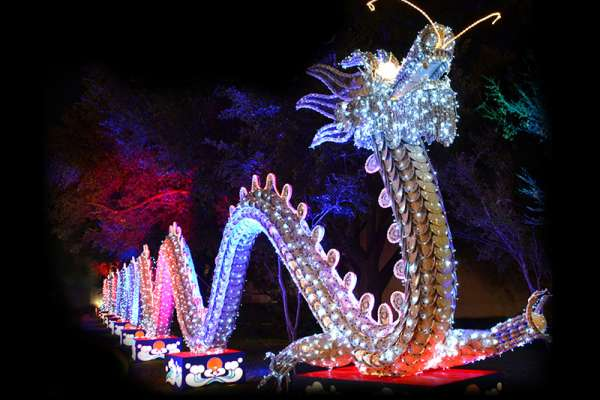 dragon_lights