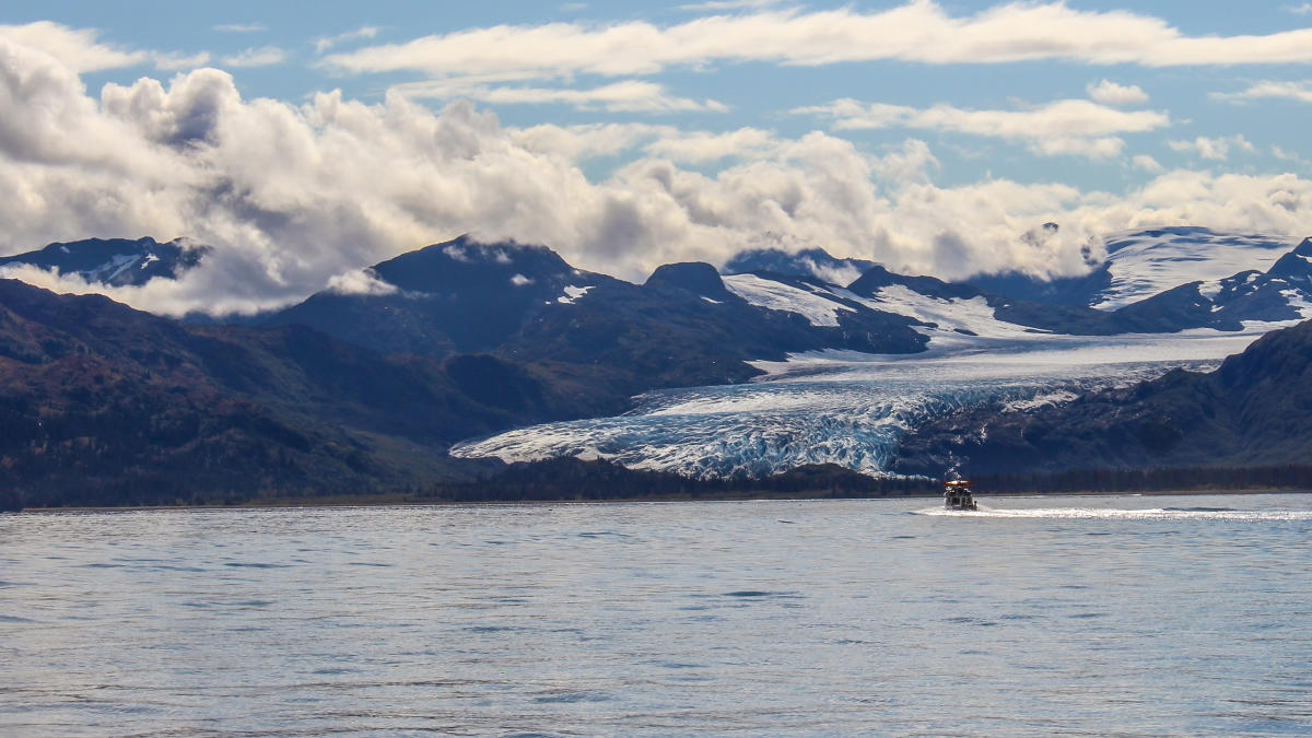 Private boat charters visit anchorage for Anchorage fishing charters