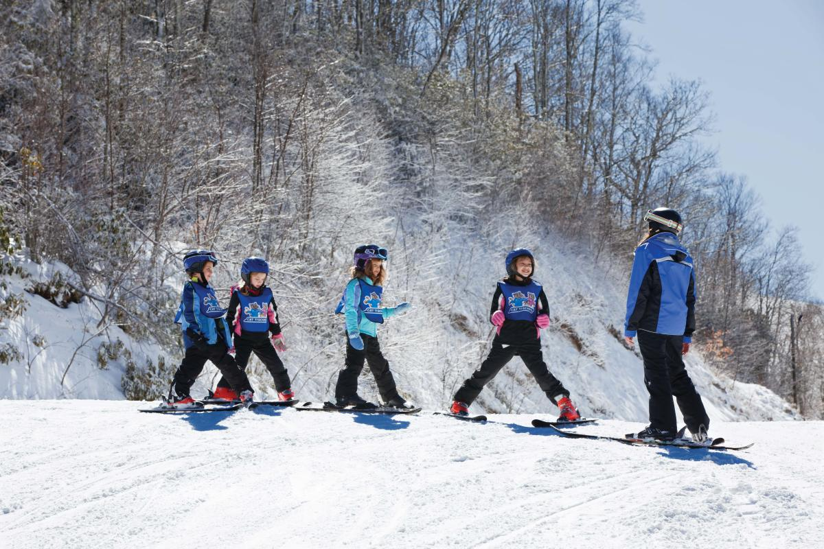 Family friendly activities winter vacations in asheville for Best family winter vacations
