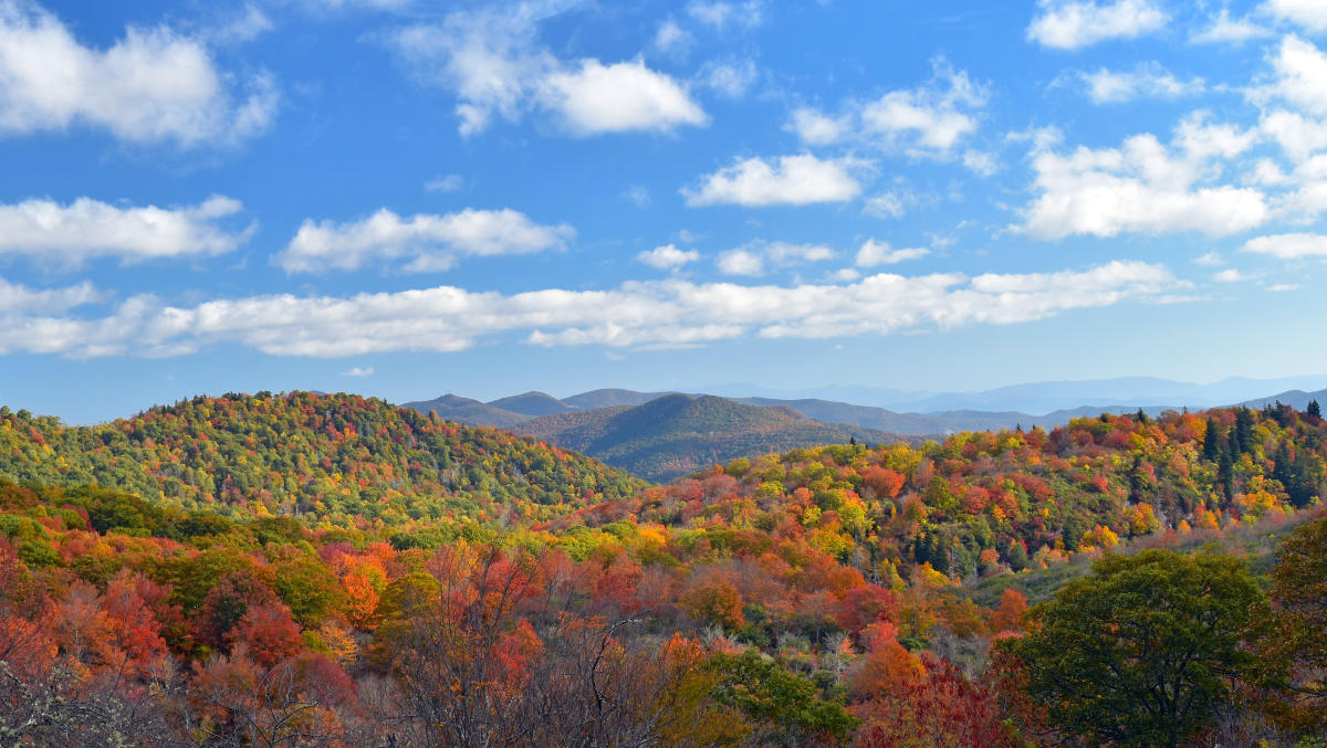 Asheville S 2017 Fall Foliage Report Amp New Fall Highlights