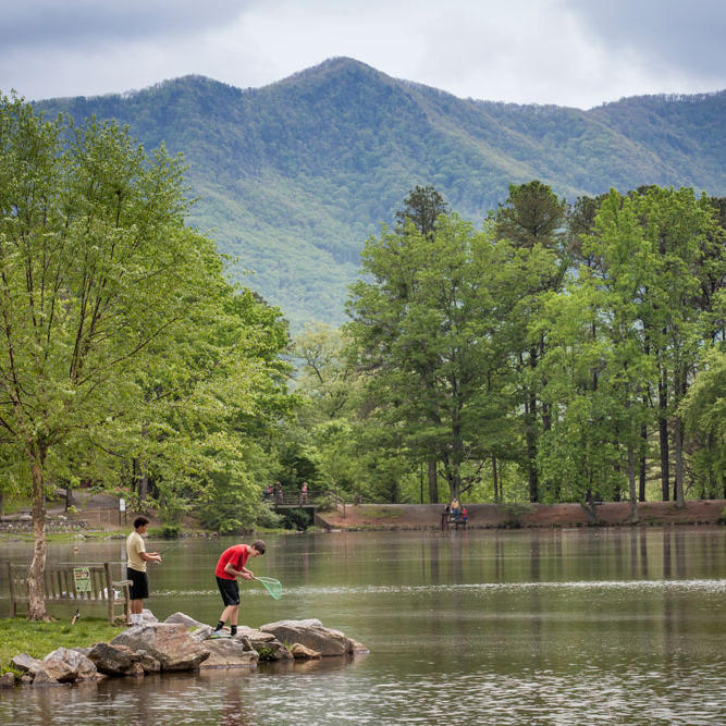 North Carolina Birding Tours
