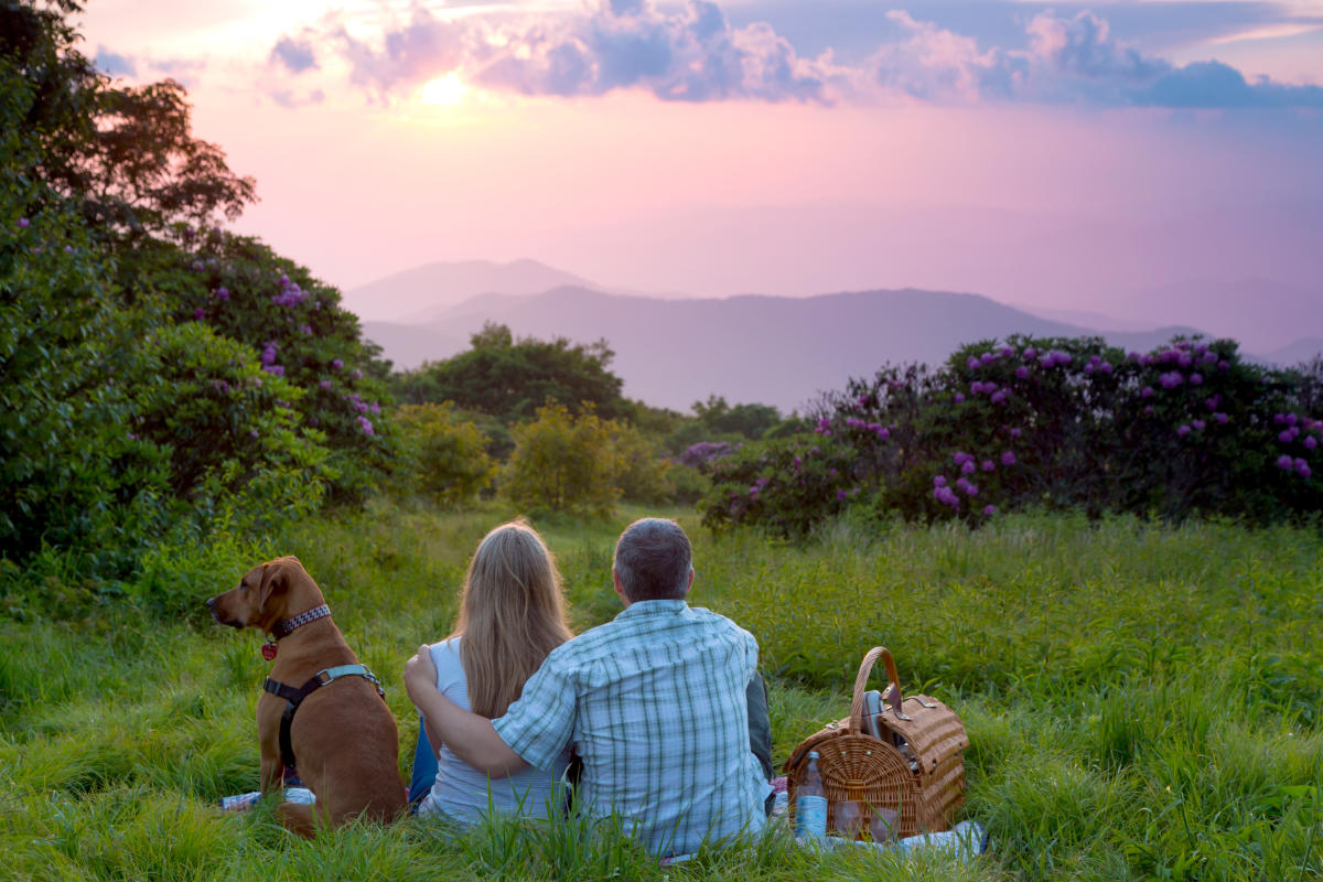 Super scenic picnics with 360 degree views for Places to stay in asheville nc cabins