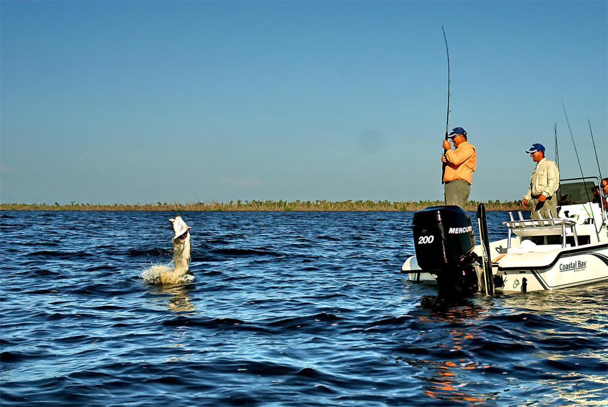 Tarpon fishing in boca grande fl tarpon world capital for World of fishing