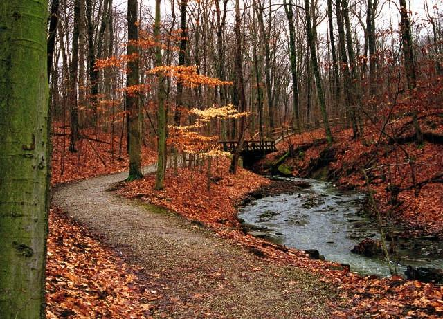 The Top 5 Fall Hikes In Greater Columbus