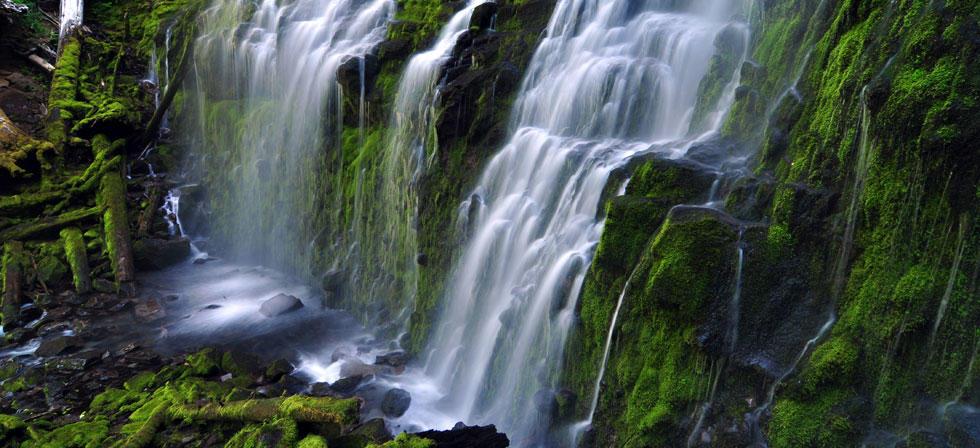 Waterfalls Eugene Cascades Amp Oregon Coast