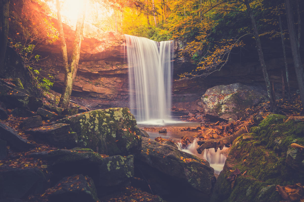 Top Things To Do In Ohiopyle State Park Laurel Highlands