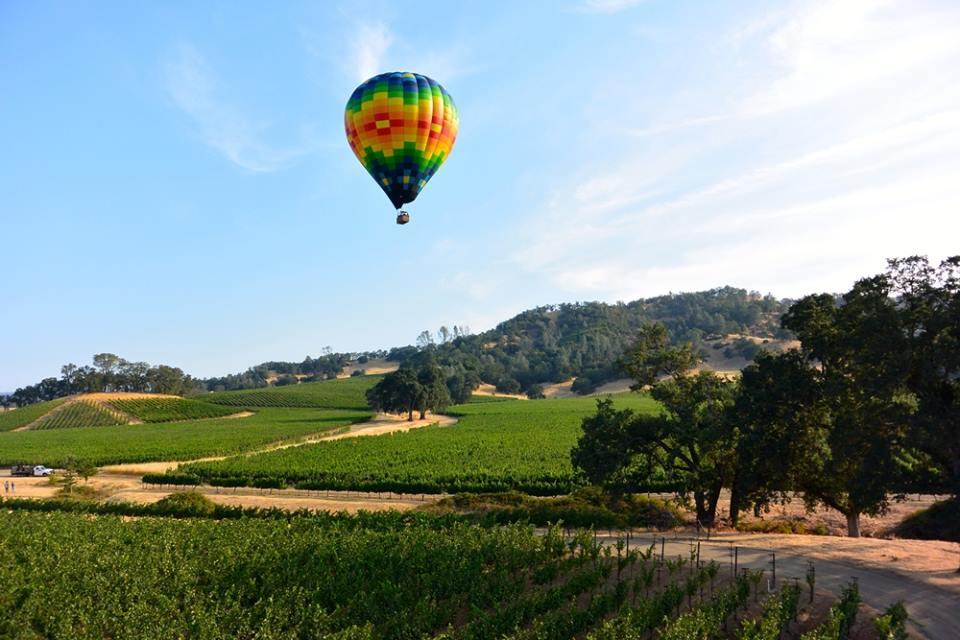 Ten Things To Do Besides Wine Tasting In Napa Valley The