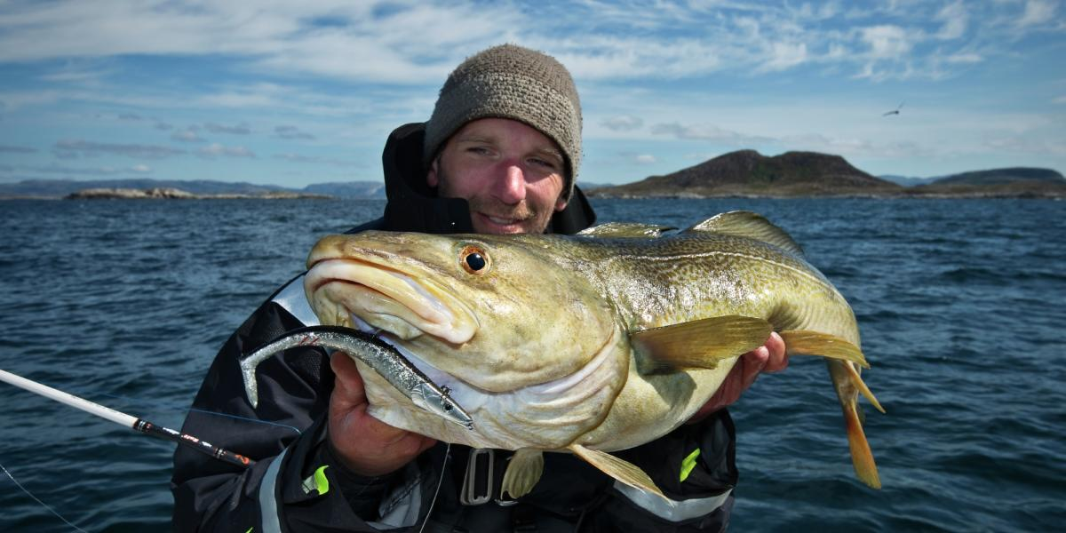 Sea fishing in northern norway official travel guide to for Places to go fishing