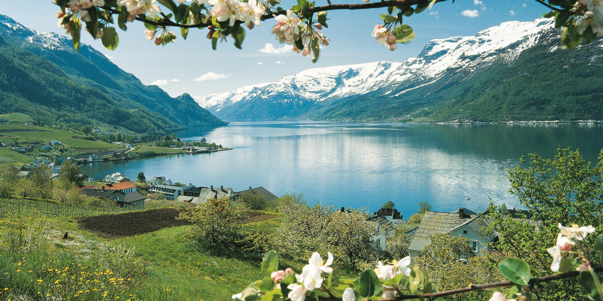 Fjord Tours - Official travel guide to Norway - visitnorway.com