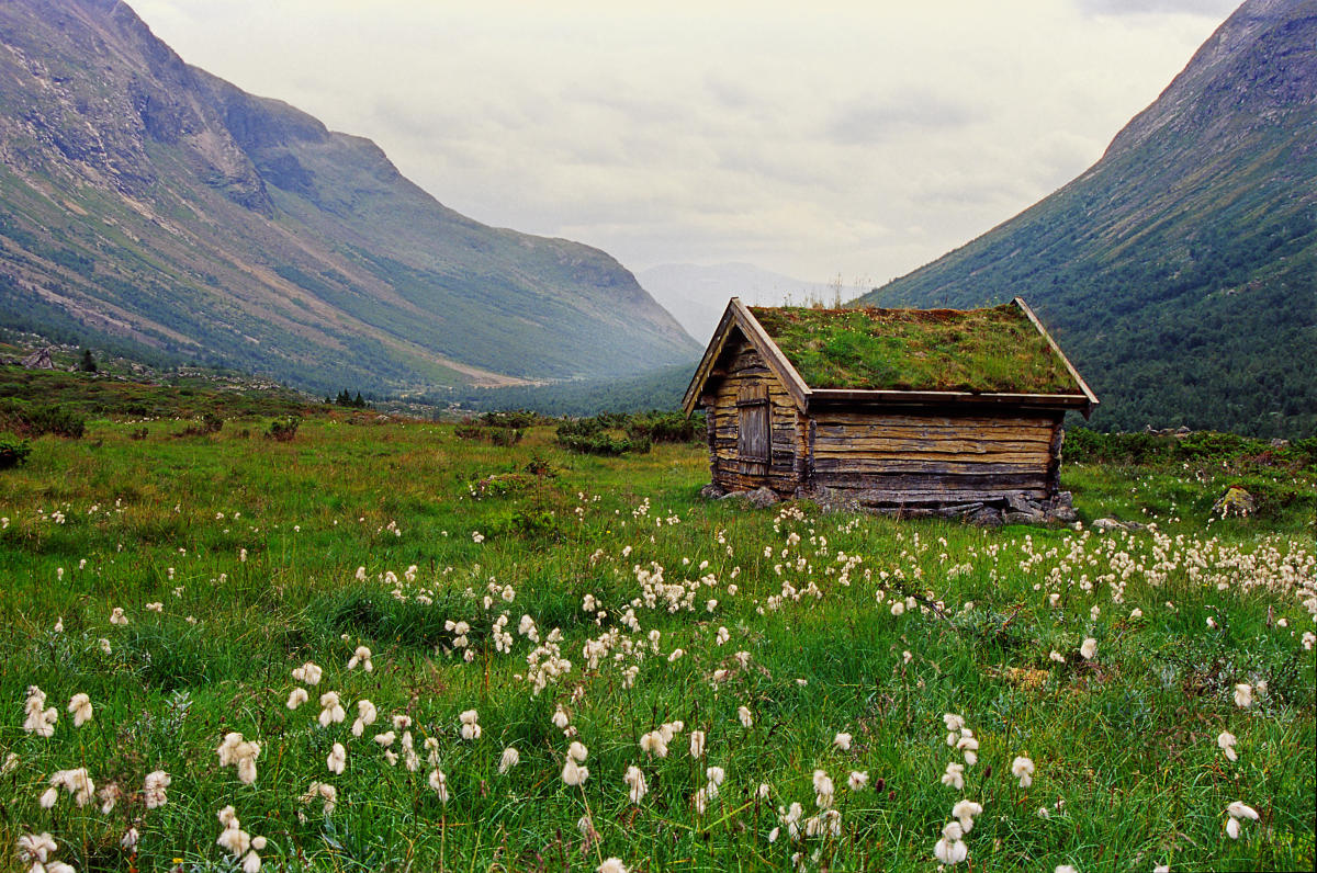 things to do in the hamar region visit norway