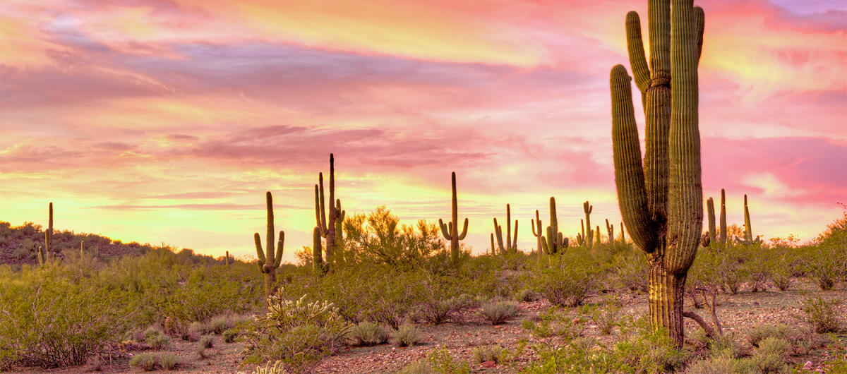 best places to catch a sunset in scottsdale