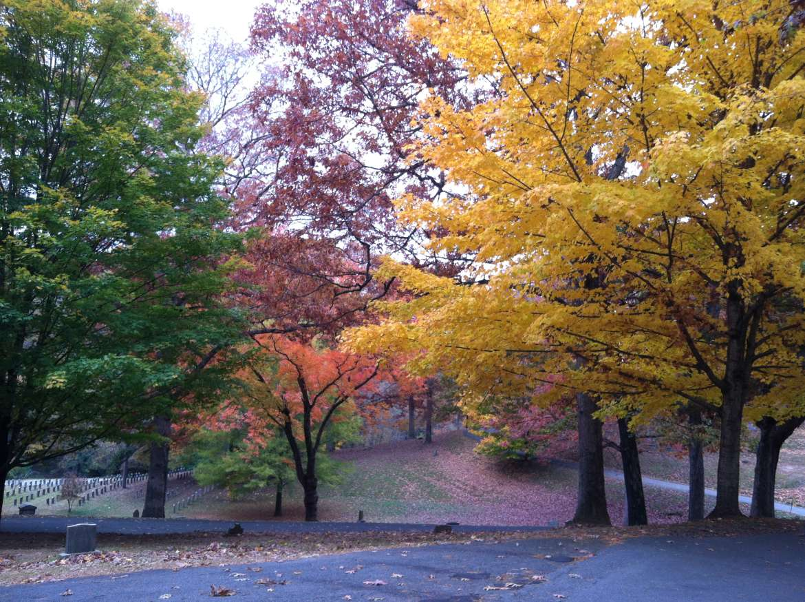 Riverside Cemetery in Fall