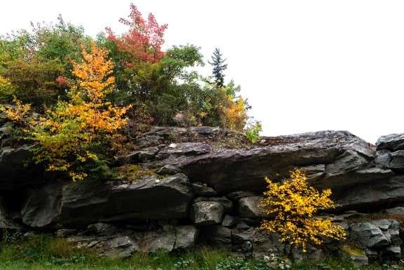 Stack Rock
