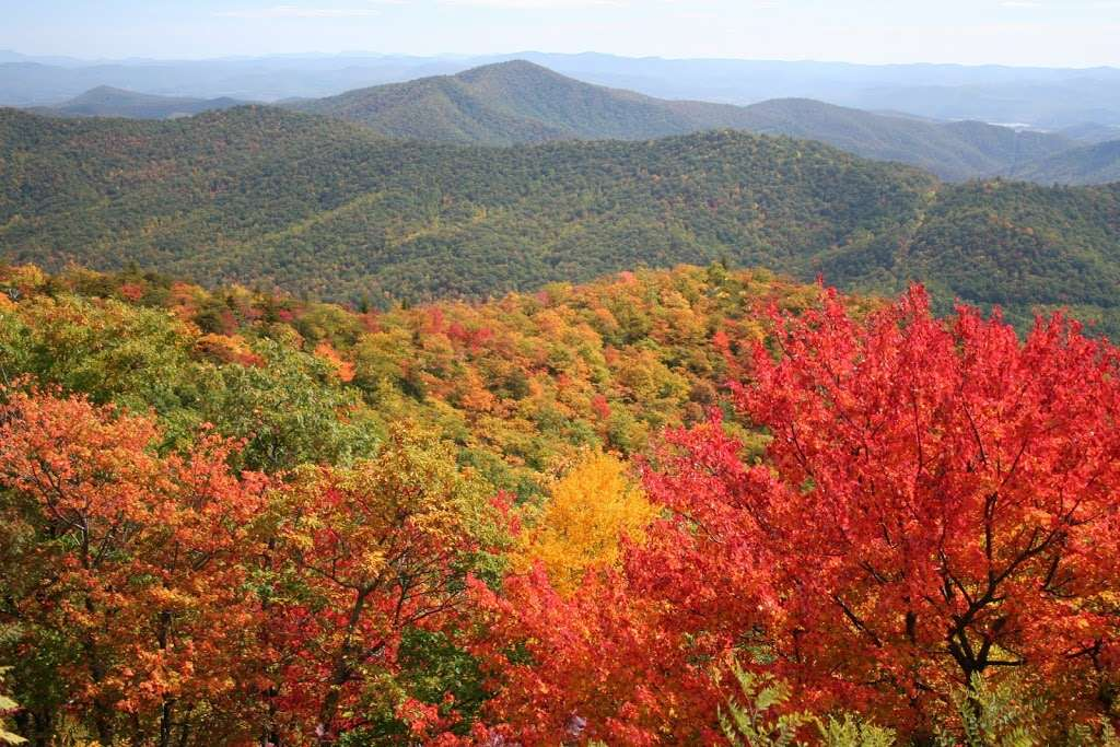 Unique Fall Adventures in Asheville