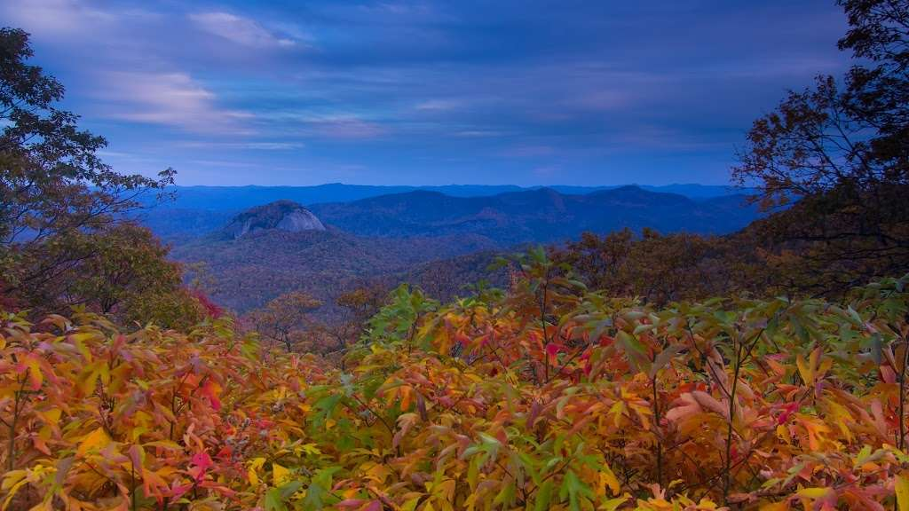 Asheville's 2013 Fall Color Forecast