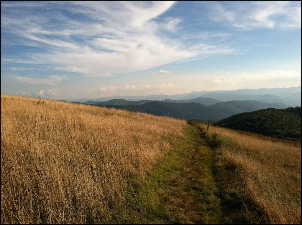 Photo of the Day: Tall Grasses of Max Patch