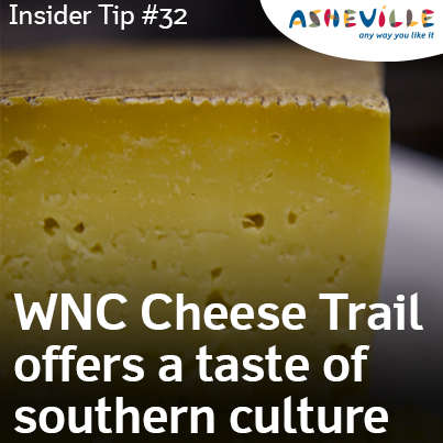 Daytrips for Cheese Addicts