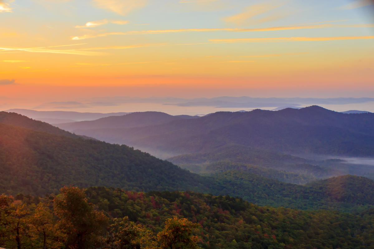 Hotels Asheville Nc >> Pisgah National Forest | Asheville, NC's Official Travel Site