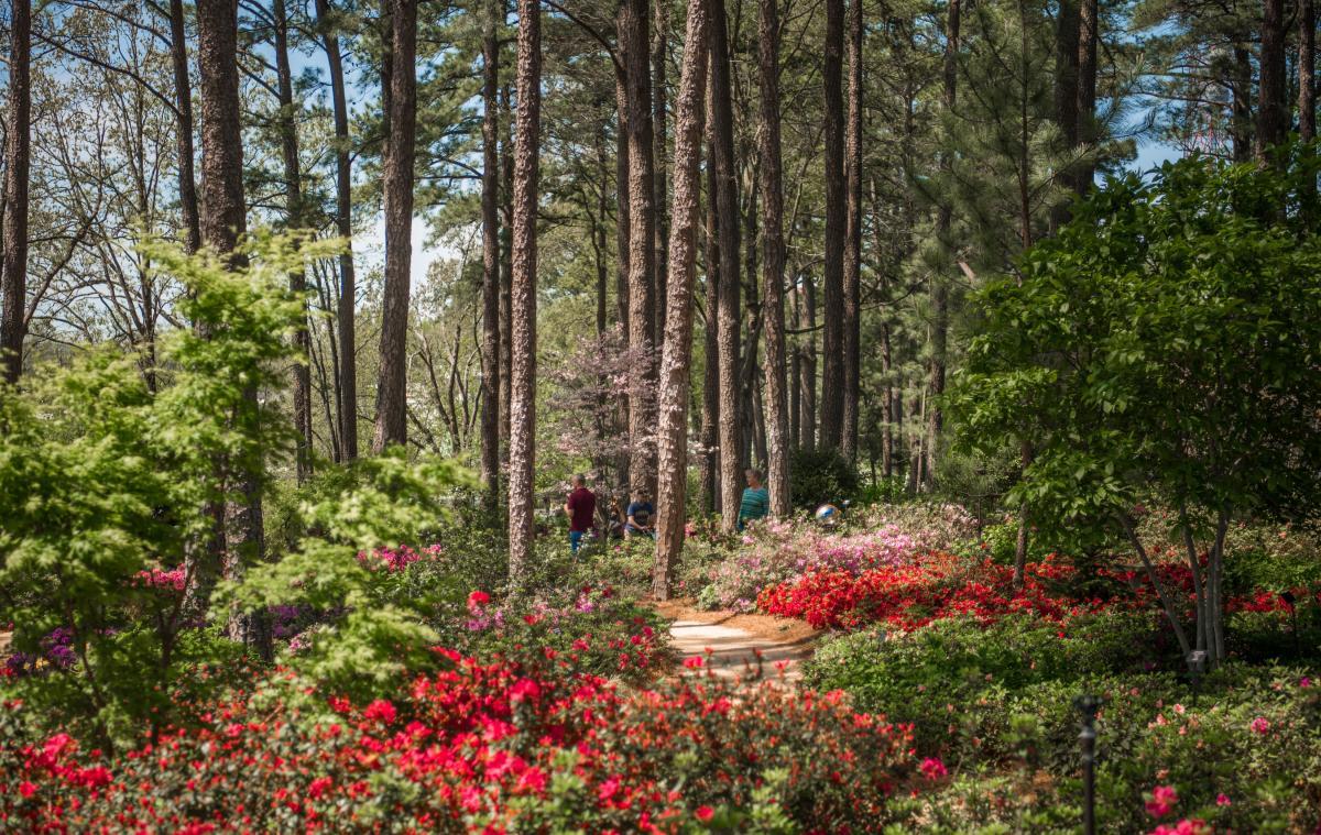 Unique Venue Spotlight: Three Outdoor Gardens Worth Exploring