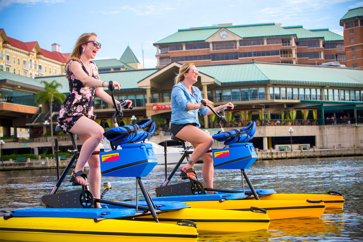 Things To Do In Tampa Florida Attractions Family Fun Amp More